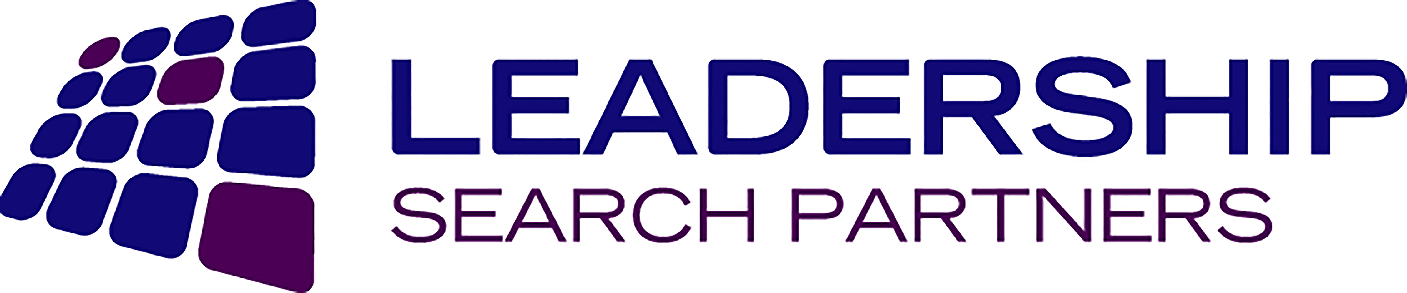Leadership Search Partners